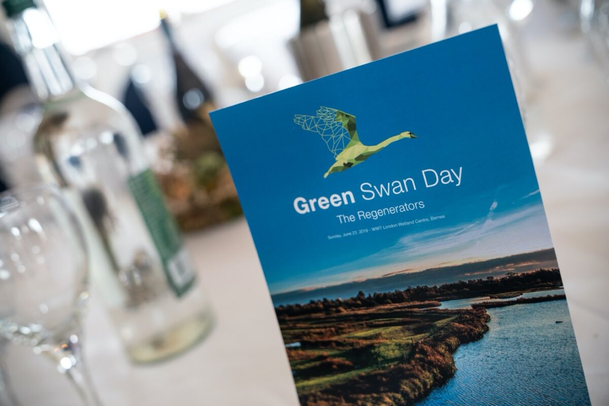 Green Swan Awards 2020 image